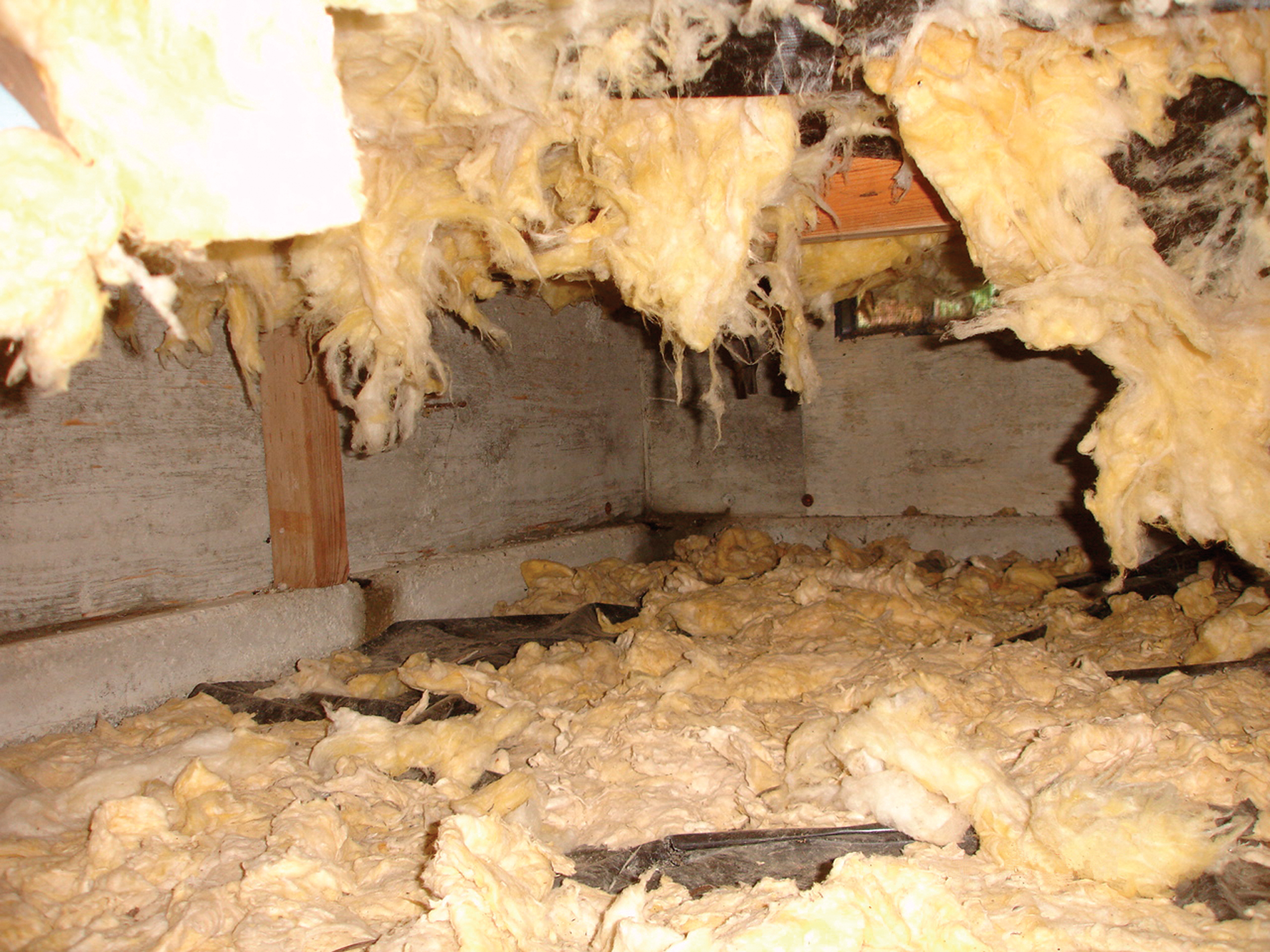 An insulated and encapsulated crawl space not only protects your home and the air quality inside, but it will keep...