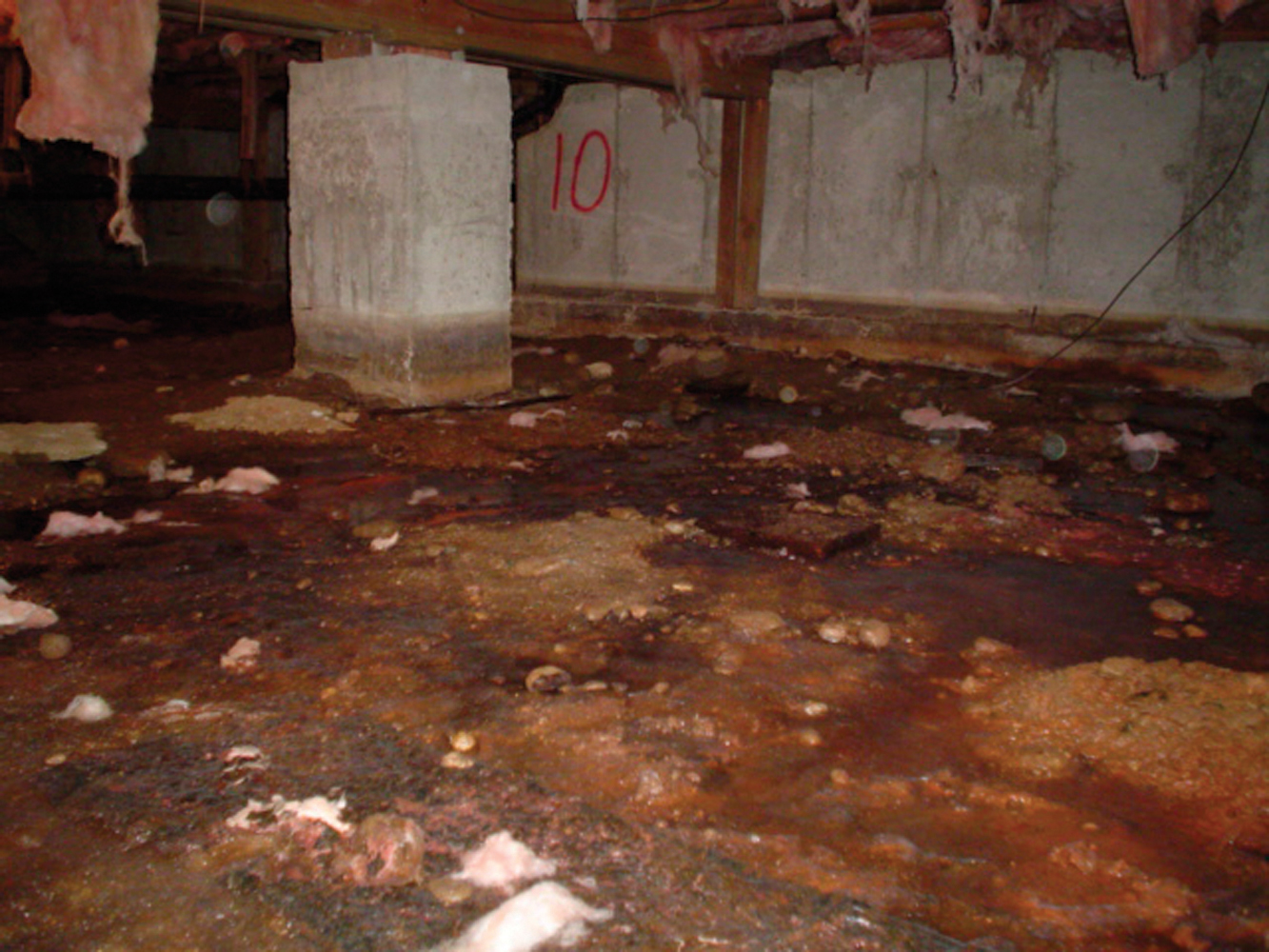 Most people never even enter their crawl spaces. What is actually down there might surprise you!...
